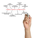 Diagram of Supply Chain Integration Royalty Free Stock Photo