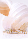 Diamond earings and ring with shell Royalty Free Stock Photo