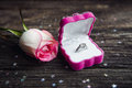 A diamond engagement ring in a jewellery box, shot next to a red rose Royalty Free Stock Photo