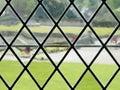 Diamond Patterned Window View