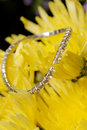Diamond Yellow Stock Images
