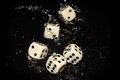 Dice rolled in water randomness Stock Photography