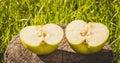 Die rustikale art halb grünes apple auf dem hintergrund eines alten holzes Stockfoto