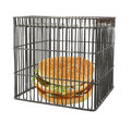 Diet concept - fast food behind bars Royalty Free Stock Photo