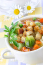 Diet vegetable soup Royalty Free Stock Photo