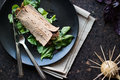 Diet wrap with meat and greens Royalty Free Stock Photo