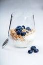 Dietetic breakfast - yoghurt with muesli and huckleberries Royalty Free Stock Photo