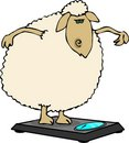 Dieting sheep Royalty Free Stock Image