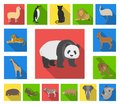 Different animals flat icons in set collection for design. Bird, predator and herbivore vector symbol stock web Royalty Free Stock Photo