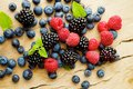 Different berries Royalty Free Stock Photo