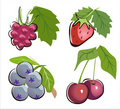 Different berry icon set Royalty Free Stock Images