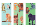 Different breads monkey print cards character animal wild zoo ape chimpanzee vector illustration. Royalty Free Stock Photo