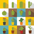 Different cactuses icons set, flat style