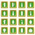 Different cactuses icons set green