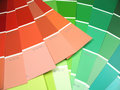 Different color swatches Royalty Free Stock Photo
