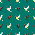 Different flying birds seamless pattern vector illustration.
