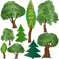 Different forms of deciduous and coniferous trees vector illustration Royalty Free Stock Image