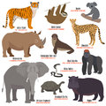 Different kinds deleted species die out rare uncommon red book animals dying wild nature characters vector illustration Royalty Free Stock Photo