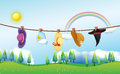 Different kinds of hats hanging under the sun illustration Royalty Free Stock Photo