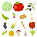 Different kinds of vegetables cartoon icons in set collection for design. Vegetables and vitamins vector symbol stock
