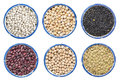 Different legume kind of dry beans white and red kidney pea and chickpea black and green lentils isolated on white Stock Images