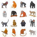Different monkeys icons set, cartoon style
