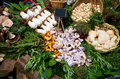 Different mushrooms herbs and spices at market stand Royalty Free Stock Photo