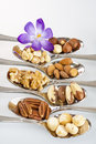 Different nuts spoons flower Royalty Free Stock Photography