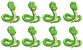 Different snake expressions illustration of the on a white background Royalty Free Stock Photo