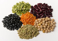 Different species of legumes Stock Image