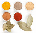 Different spices in bowls isolated on white. Royalty Free Stock Images