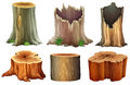 Different tree stumps illustration of the on a white background Stock Photo