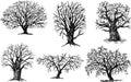 Odlišný stromy