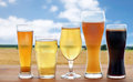 Different types of beer glasses over cereal field Royalty Free Stock Photo