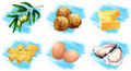 Different types of food ingredients