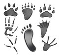 Different types of footprints isolated on white background. 3d r Royalty Free Stock Photo