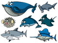 Different types of sharks