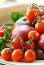 Different varieties of tomatoes Stock Images