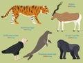 Different wildlife animals danger mammal endangered species wild bengal wildcat character vector illustration