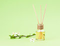 Diffuser with wooden sticks Royalty Free Stock Photo