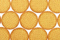Digestive biscuits in orderly rows on white background Royalty Free Stock Images