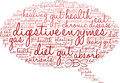 Digestive Enzymes Word Cloud Royalty Free Stock Photo