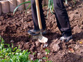 Digging the garden Royalty Free Stock Photo