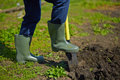Digging image of male farmer in the garden Royalty Free Stock Photo