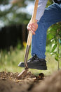 Digging soil Royalty Free Stock Photography