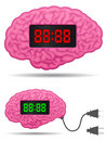 Digital alarm clock brain with connector plug cabl Stock Photography