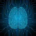Digital Brain Illustration