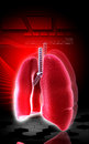 Digital illustration human lungs colour background Stock Photography