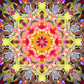 Digital Painting Beautiful Abstract Colorful Floral Mandala Background