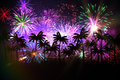 Digitally generated palm tree background with fireworks colourful Royalty Free Stock Images